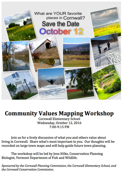 Community Values Mapping Workshop